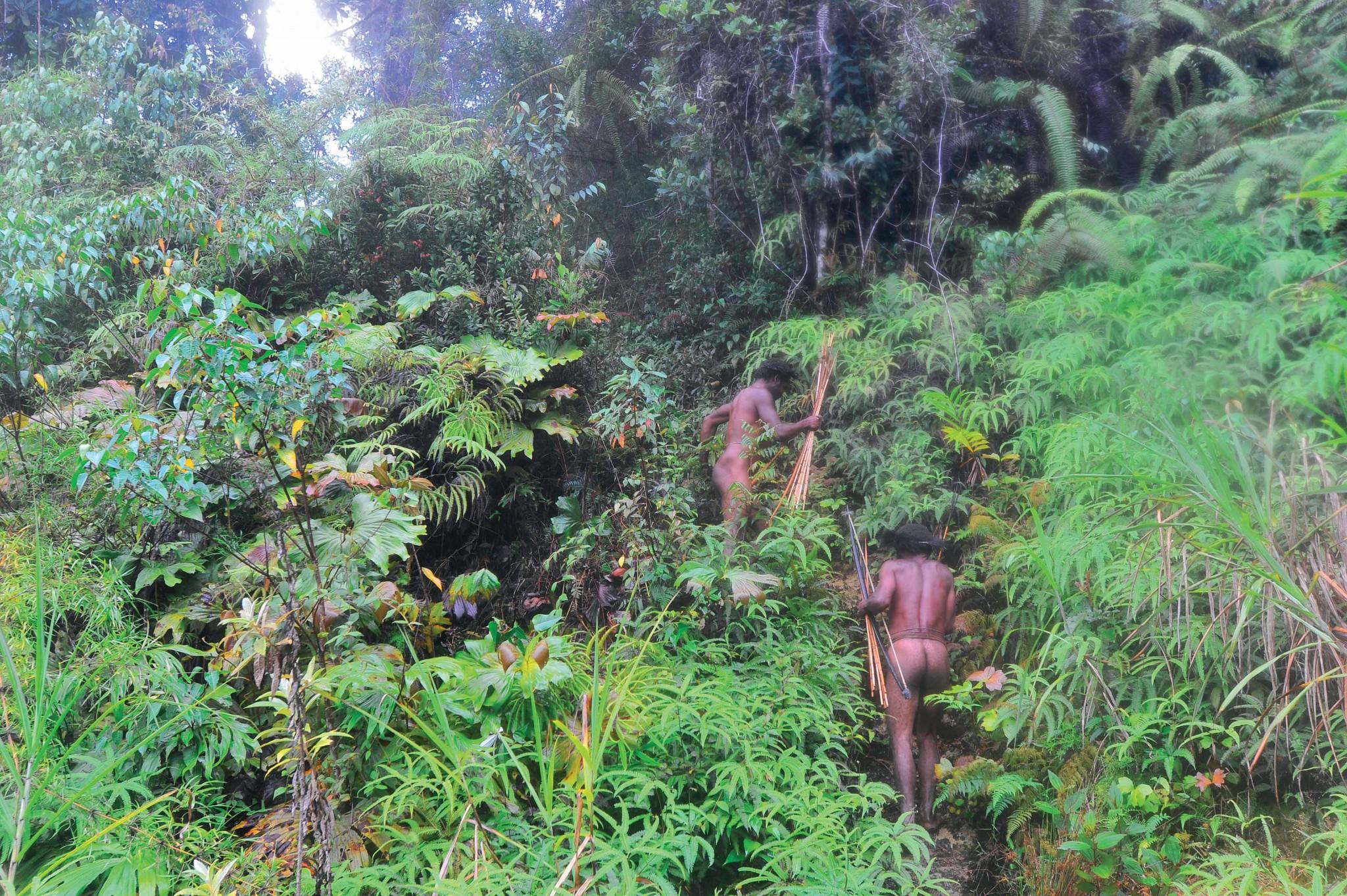 Thợ săn Dani trong rừng sâu của dãy Jayawija.