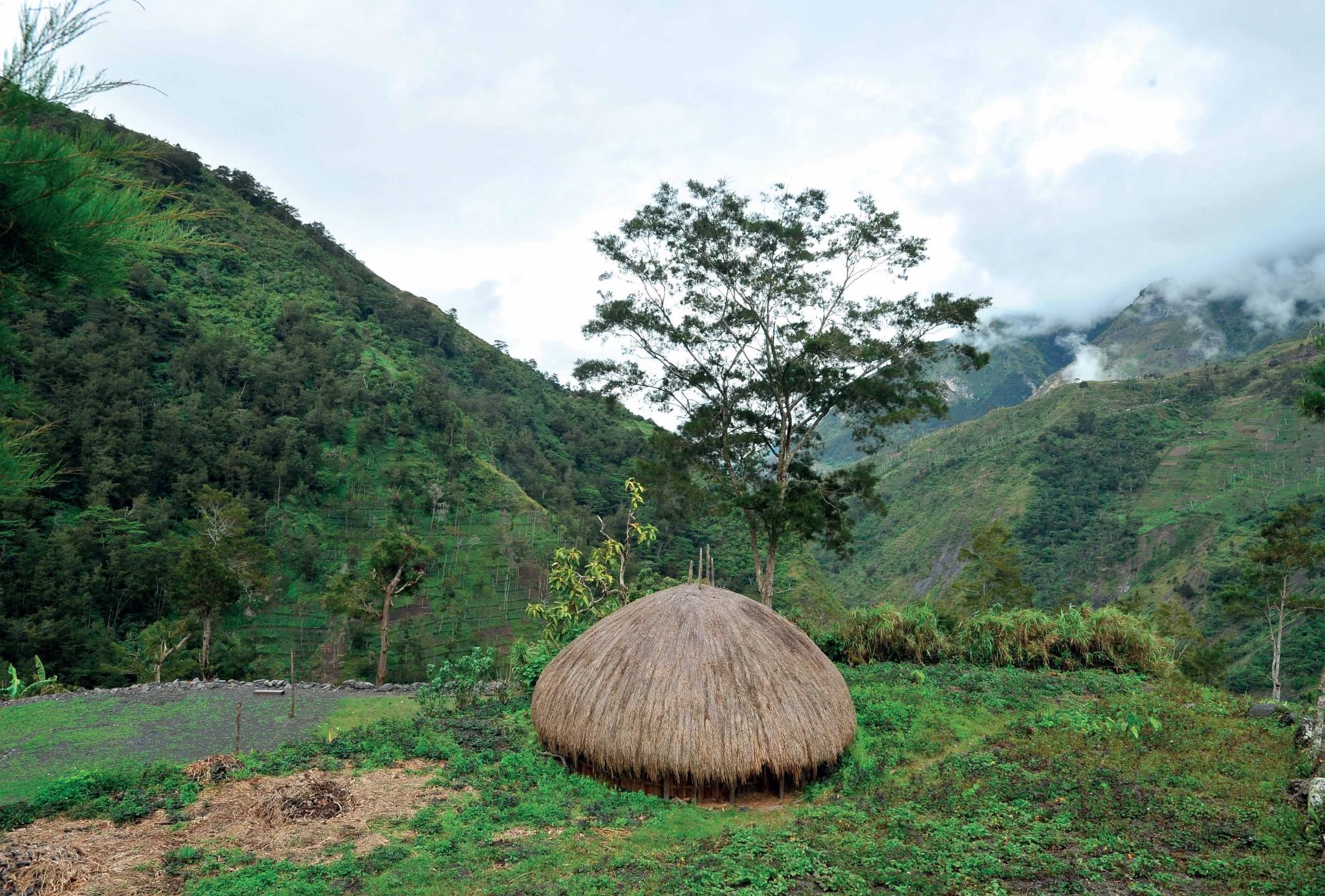 ngôi nhà Honai như cây nấm rơm giữa núi rừng.