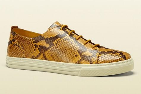 Giày thể thao nam đẹp Gucci Python