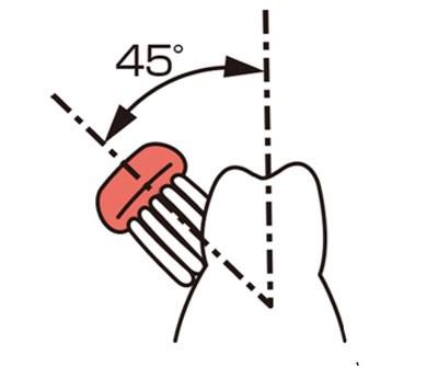 Bàn chải và răng tạo thành một góc 45 độ