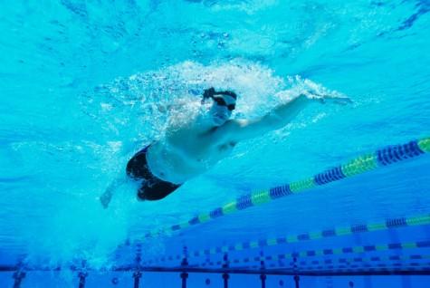 các bài tập tăng chiều cao cho người trưởng thành - bơi lội - elleman