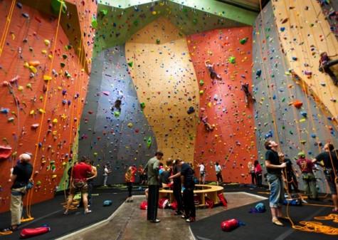 Bộ môn leo núi trong nhà ngày càng được nhiều người yêu thích