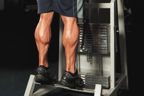 Các phương pháp tăng cơ bắp chân hiệu quả