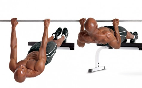 elevated-inverted-row