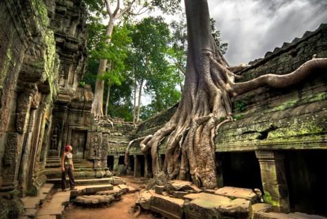 Đông Nam Á elleman1