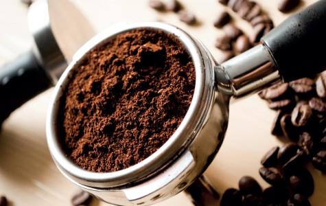 Con đường mùi hương cà phê - elle man