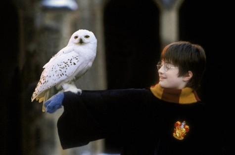 truyện Harry Potter với những điều vô lý - elleman 4