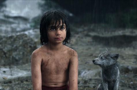 cậu bé rừng xanh - Mowgli - elle man