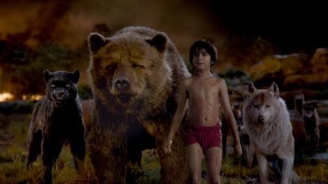 cậu-bé-rừng-xanh-Mowgli-union-with-animals-elle-man