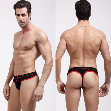 Brand-New-Cheap-Price-Low-waist-Mens-sheer-underwear-Mens-briefs-Sexy-mens-pouch-penis-underwear