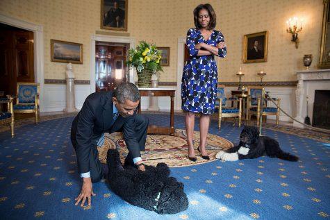 Vợ chồng Tổng thống vui đùa cùng hai chú chó, 5/11/2013