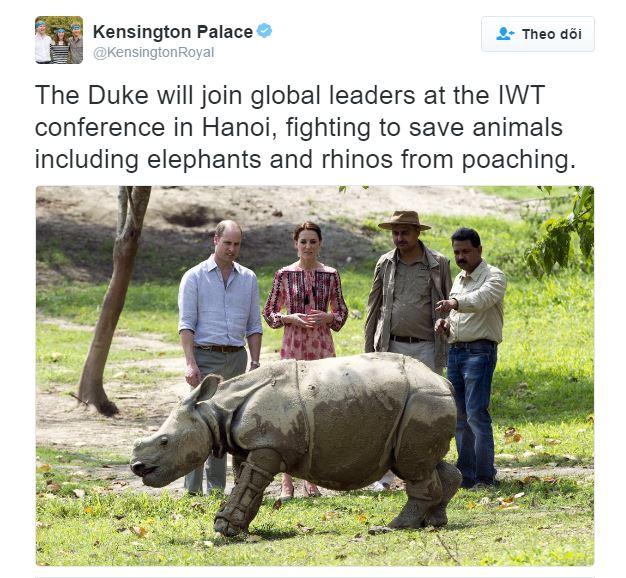 Thông báo của Twitter điện Kenshington rằng Hoàng tử sẽ đến Việt Nam trong khuôn khổ Hội nghị vấn đề buôn bán động vật hoang dã được đăng vào ngày thứ Ba 15/11/2016.