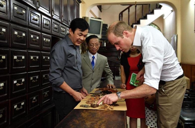 Hoàng tử William trong tiệm thuốc cổ truyển.