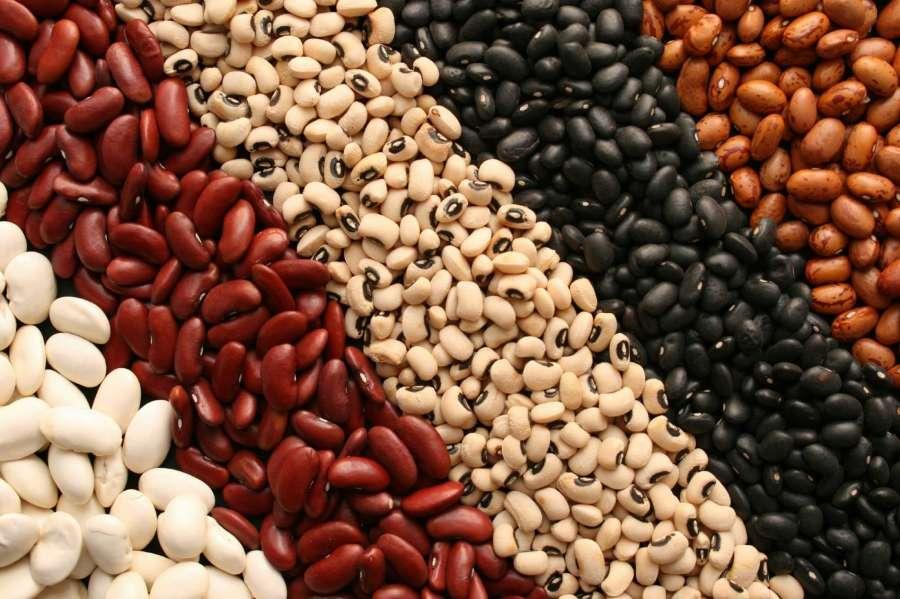 thực phẩm dinh dưỡng - đậu - elle man
