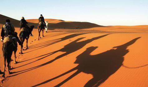 Ánh sáng ban mai rực rỡ của Sahara