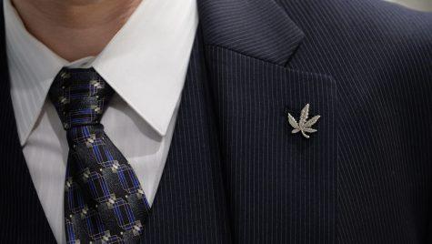Xu hướng thời trang Cannabis – Ranh giới giữa định kiến và hợp pháp