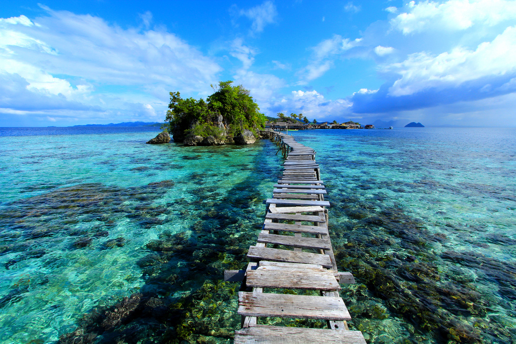 Togean _ Featured Image