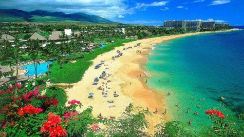 du lich nghi duong Maui_elle man 13