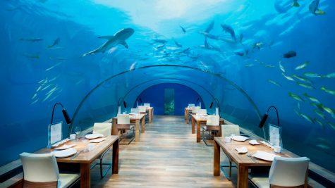 du lich nghi duong _ Maldives_elle man 3