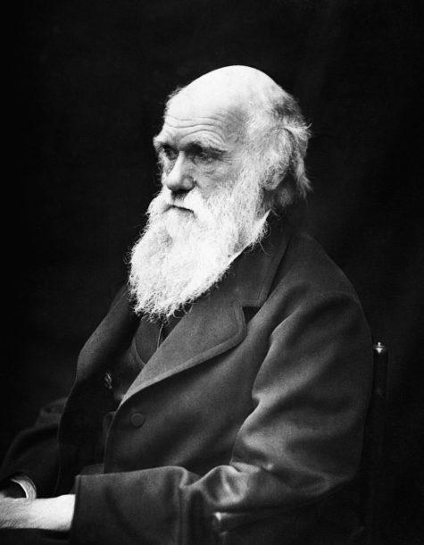 nguoi noi tieng - Charles Darwin - elle man