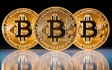 dong tien ao bitcoin - elle man 1