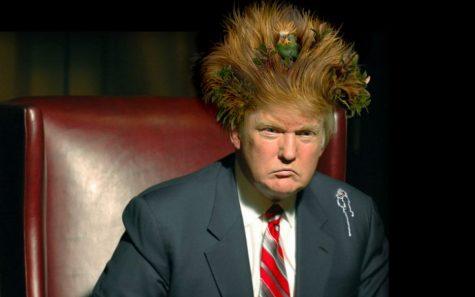 Và chính trị trở thành...sân khấu hài kịch của Donald Trump?