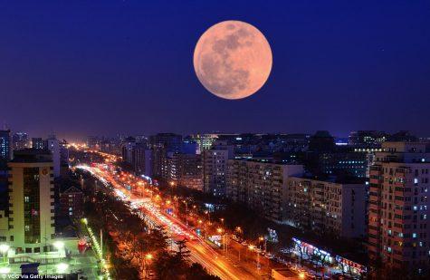 siêu trăng xanh máu- ELLE Man 1