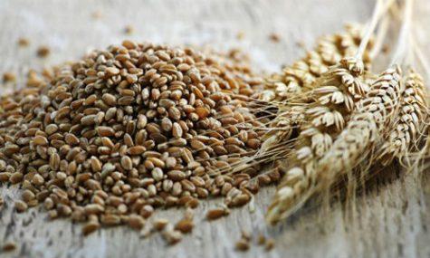 6-loai-hat-ngu-coc-chang-trai-nen-an-elle-man-5-475x285 6 loại hạt ngũ cốc tốt cho sức khỏe mà bạn nên thử qua
