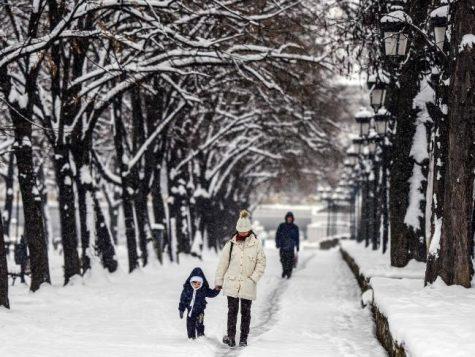 Khách du lịch Châu Âu tản bộ dưới hàng cây đóng băng ở Macedonia