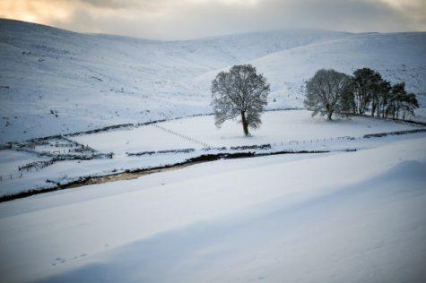 Một cánh đồng tuyết phủ kín ở Scotland