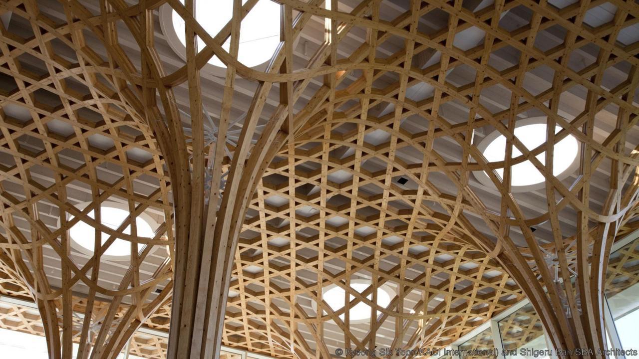 thiết kế trần nhà 6 - elleman