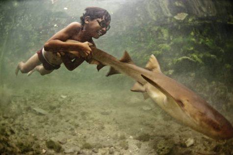 Bộ ảnh đẹp về cuộc sống của bộ tộc du mục biển cuối cùng