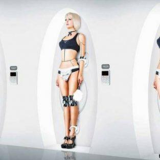 Robot tình dục: Tương lai đã ở rất gần?