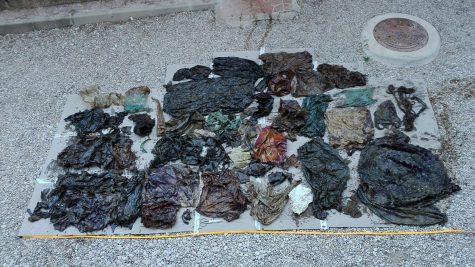 29 ký rác thải nhựa đã được tìm thấy trong dạ dày của con cá này. Ảnh: EspaciosNaturalesMur