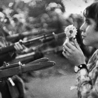 """Ngắm nhìn bộ ảnh phản chiến tại buổi triển lãm nghệ thuật """"Chiến Tranh và Hoa"""""""