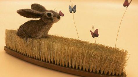 Bộ ảnh đẹp về thế giới động vật được lấy ý tưởng từ bàn chải cũ