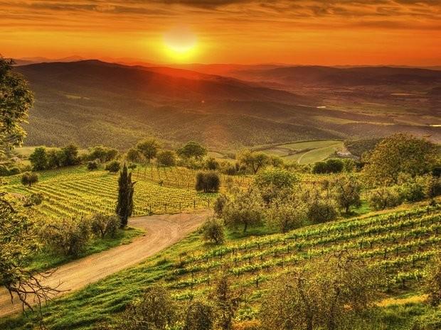 Nếu không thích khung cảnh xa hoa lộng lẫy bạn cũng có thể tìm về miền quê Chianti yên bình. Ảnh: Zing