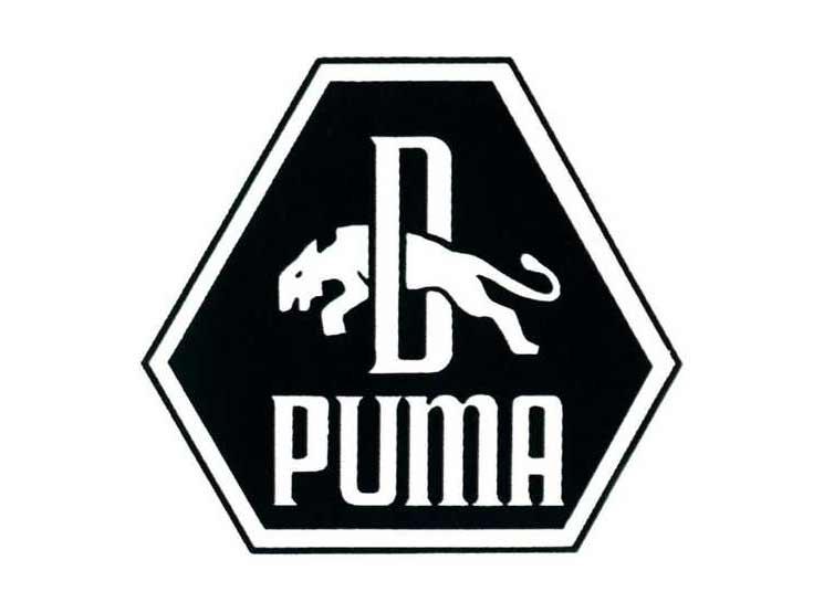 logo thuong hieu puma - elle man 4