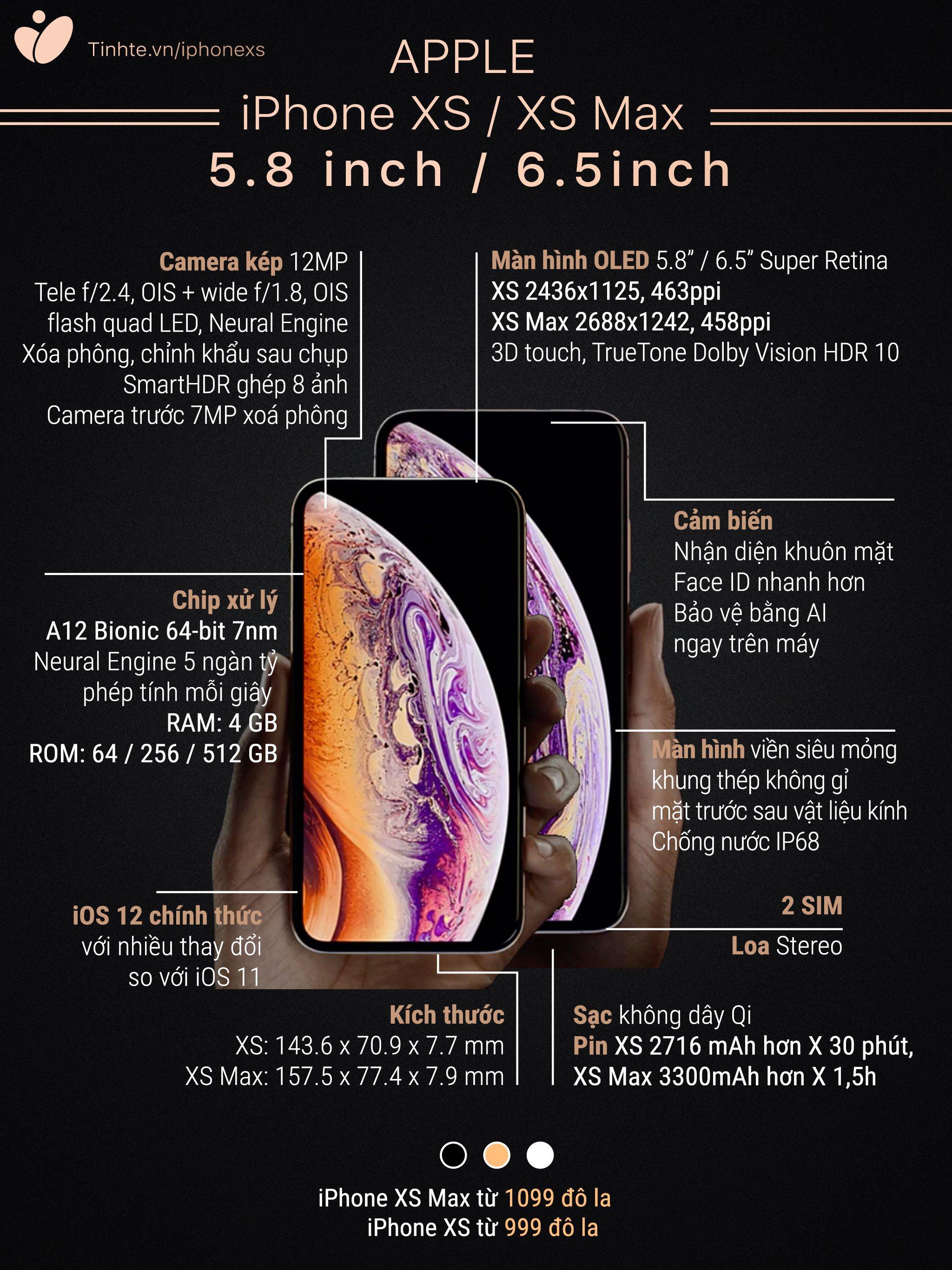 So sánh iPhone XS và XS Max. Ảnh: Tinh Tế