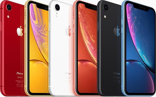 iPhone XR với màu sắc nổi bật hơn XS và XS Max. Ảnh: Hypebeast