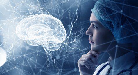"""Các nhà nghiên cứu khoa học đã tìm ra cách """"tải"""" kiến thức trực tiếp lên não"""