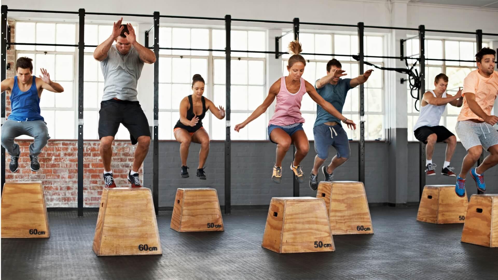 Ảnh: Fitness Genes