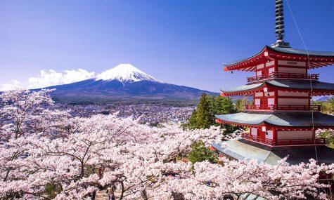 Đất nước Nhật Bản chính thức nới lỏng chính sách thị thực cho người nước ngoài
