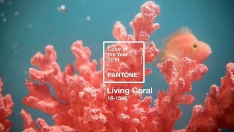 mau living coral elle men 13