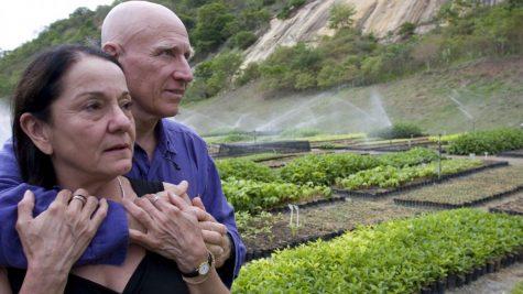 Chặng đường 20 năm hồi sinh rừng cây xanh của vợ chồng nhiếp ảnh gia Salgado