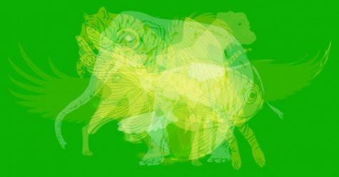 Trắc nghiệm hình ảnh: Con vật nào sẽ thể hiện đặc trưng tính cách của bạn nhất