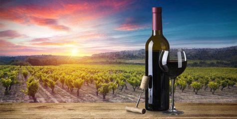 chọn rượu vang đỏ vùng Tuscany