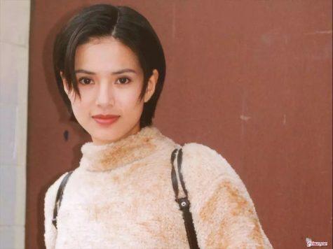 mỹ nhân Hong Khong-Lý Nhược Đồng xinh đẹp