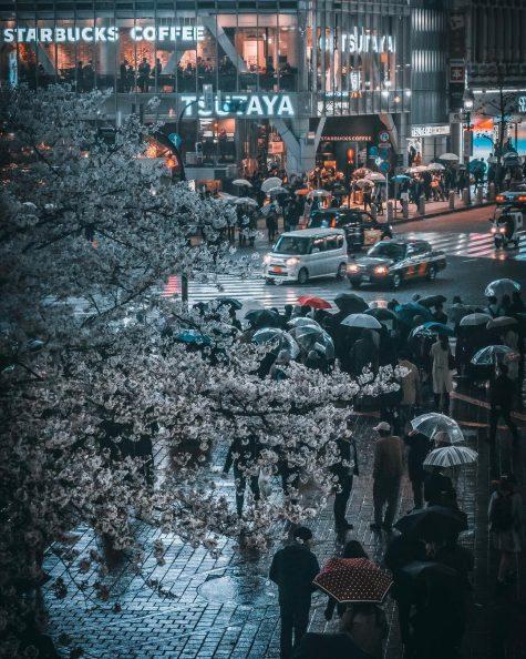 bộ ảnh đẹp - khung cảnh đường phố nhật bản