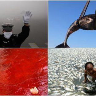 Bộ ảnh chân thật về thực trạng môi trường thế giới đang lâm nguy